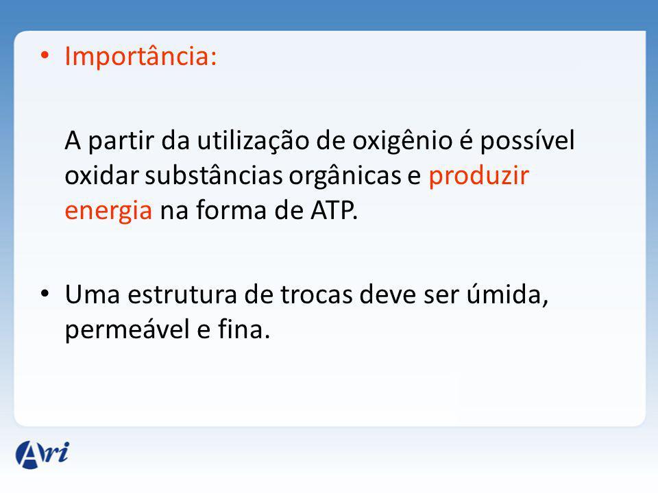 Importância: A partir da utilização de oxigênio é possível oxidar substâncias orgânicas e produzir energia na forma de ATP.