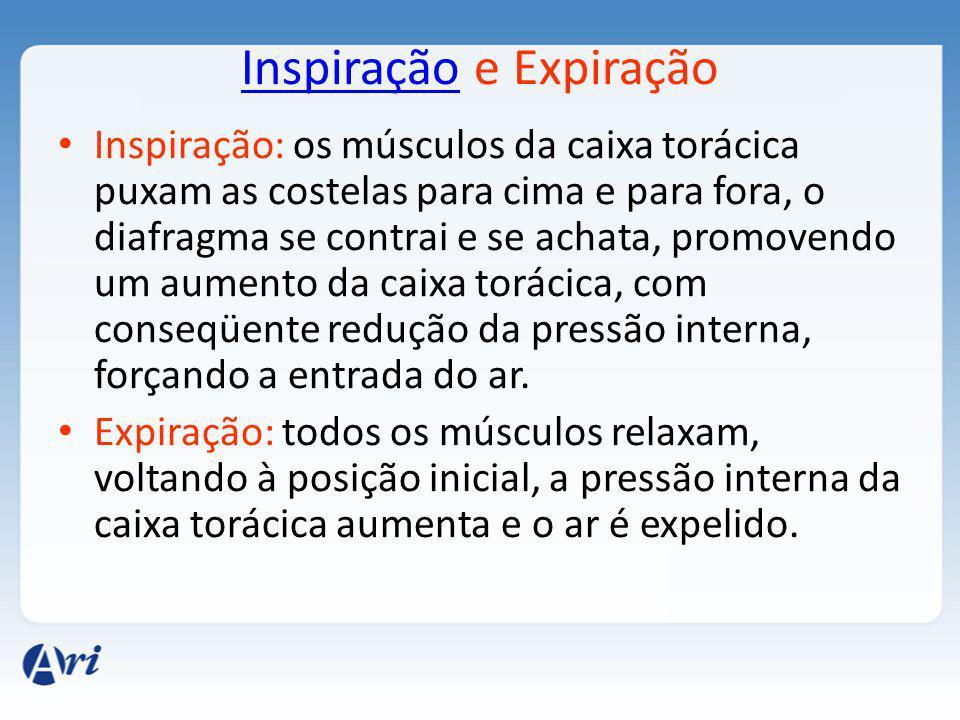 InspiraçãoInspiração e Expiração Inspiração: os músculos da caixa torácica puxam as costelas para cima e para fora, o diafragma se contrai e se achata, promovendo um aumento da caixa torácica, com conseqüente redução da pressão interna, forçando a entrada do ar.