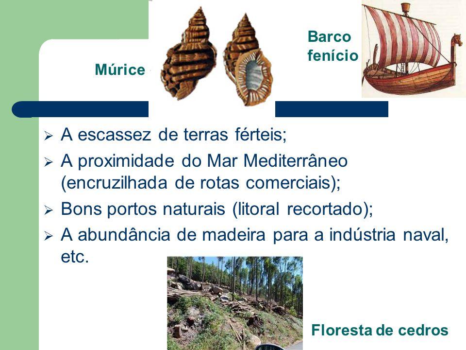 A escassez de terras férteis; A proximidade do Mar Mediterrâneo (encruzilhada de rotas comerciais); Bons portos naturais (litoral recortado); A abundâ