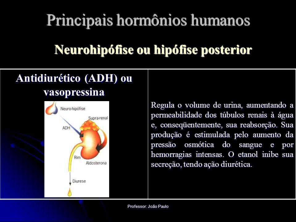 Professor: João Paulo Principais hormônios humanos Neurohipófise ou hipófise posterior Antidiurético (ADH) ou vasopressina Regula o volume de urina, aumentando a permeabilidade dos túbulos renais à água e, conseqüentemente, sua reabsorção.