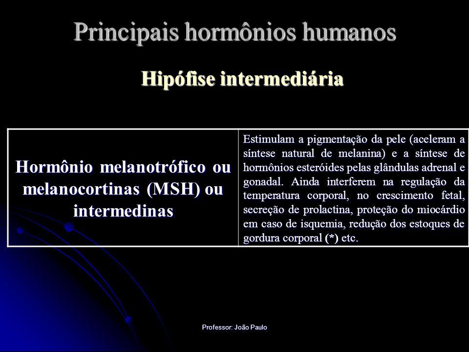 Professor: João Paulo Principais hormônios humanos Hipófise intermediária Hormônio melanotrófico ou melanocortinas (MSH) ou intermedinas Estimulam a p