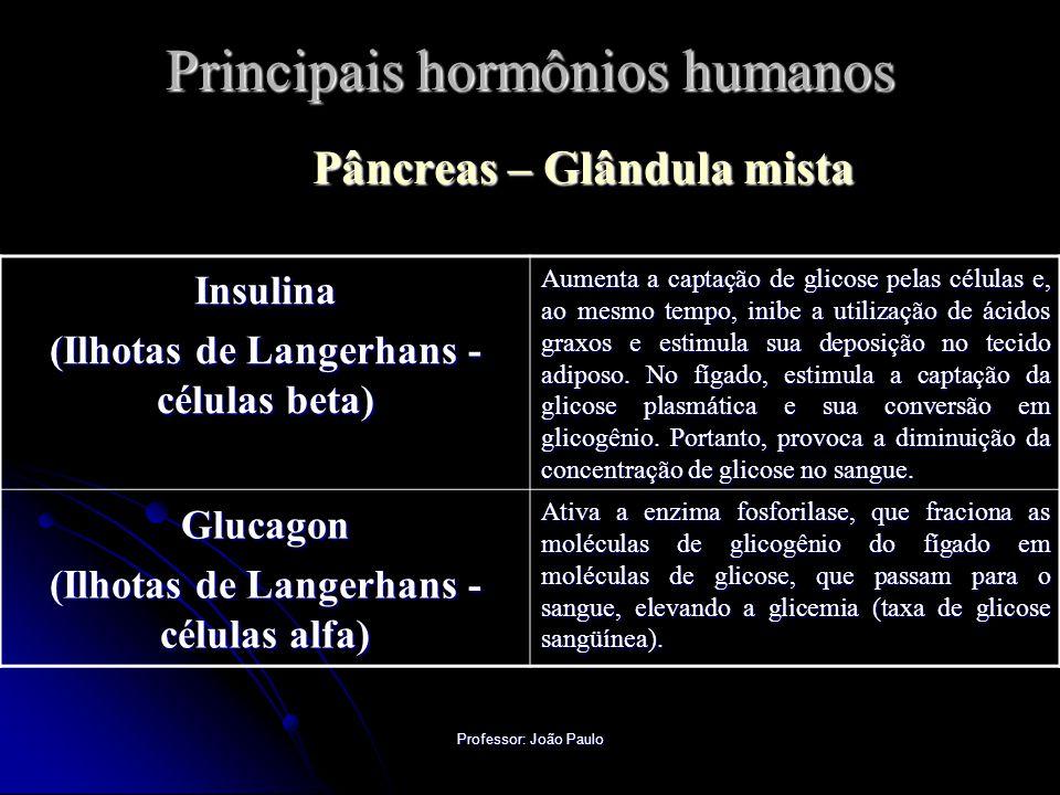 Professor: João Paulo Principais hormônios humanos Pâncreas – Glândula mista Insulina (Ilhotas de Langerhans - células beta) Aumenta a captação de gli