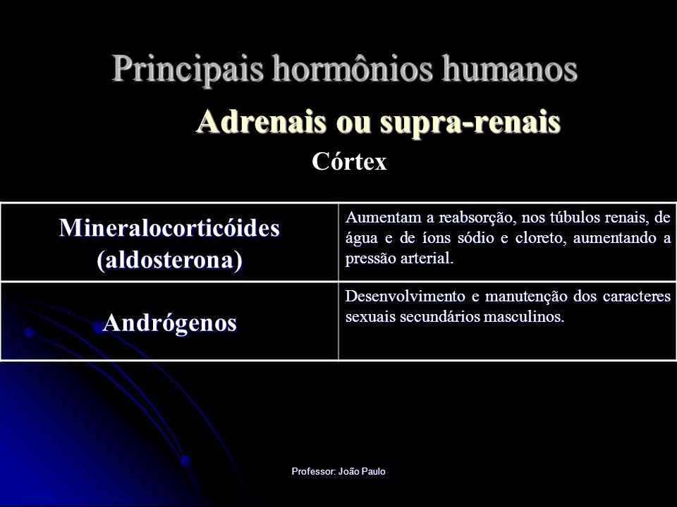 Professor: João Paulo Principais hormônios humanos Adrenais ou supra-renais Córtex Mineralocorticóides (aldosterona) Aumentam a reabsorção, nos túbulos renais, de água e de íons sódio e cloreto, aumentando a pressão arterial.
