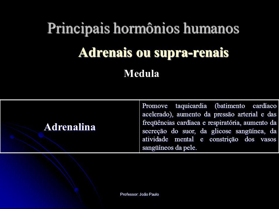 Professor: João Paulo Principais hormônios humanos Adrenais ou supra-renais Medula Adrenalina Promove taquicardia (batimento cardíaco acelerado), aume