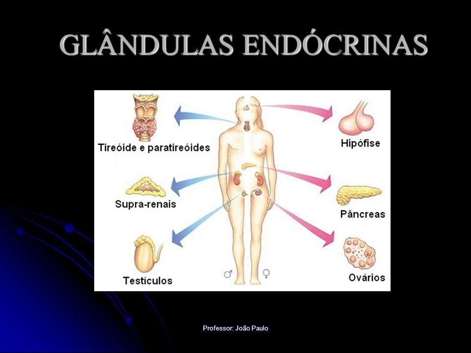 Professor: João Paulo CIRCUITO HIPOTÁLAMO/HIPÓFISE Freqüentemente o sistema nervoso interage com o endócrino formando mecanismos reguladores bastante precisos.