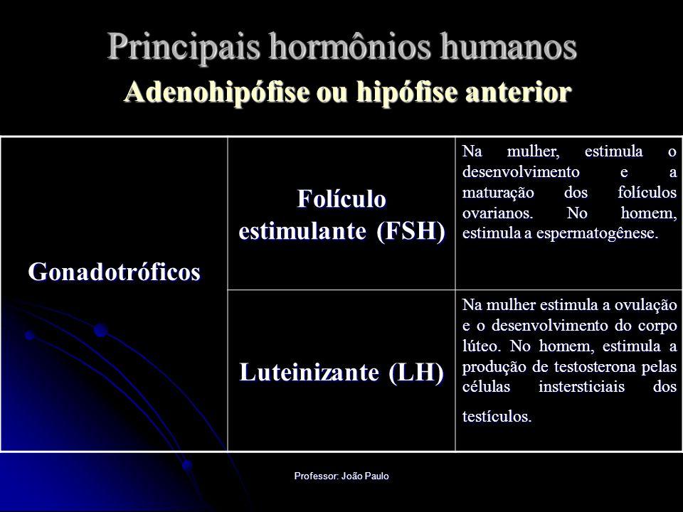Professor: João Paulo Principais hormônios humanos Adenohipófise ou hipófise anterior Gonadotróficos Folículo estimulante (FSH) Na mulher, estimula o