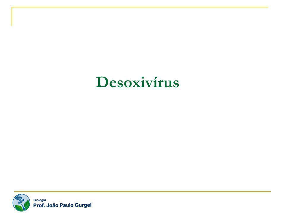 Varíola Contágio direto através de aerossóis de saliva; contágio indireto através de objetos contaminados.