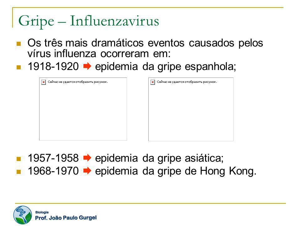 Os três mais dramáticos eventos causados pelos vírus influenza ocorreram em: 1918-1920 epidemia da gripe espanhola; 1957-1958 epidemia da gripe asiáti