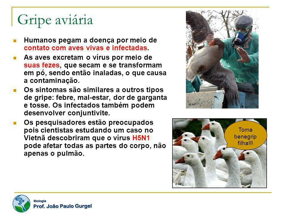 Gripe aviária Humanos pegam a doença por meio de contato com aves vivas e infectadas. As aves excretam o vírus por meio de suas fezes, que secam e se