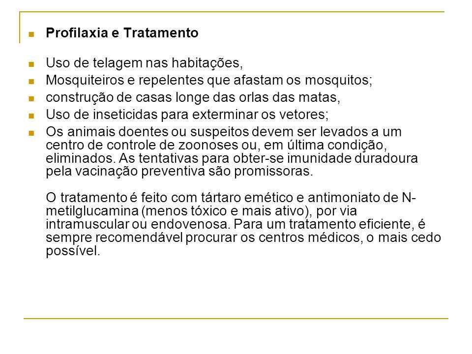 Profilaxia e Tratamento Uso de telagem nas habitações, Mosquiteiros e repelentes que afastam os mosquitos; construção de casas longe das orlas das mat