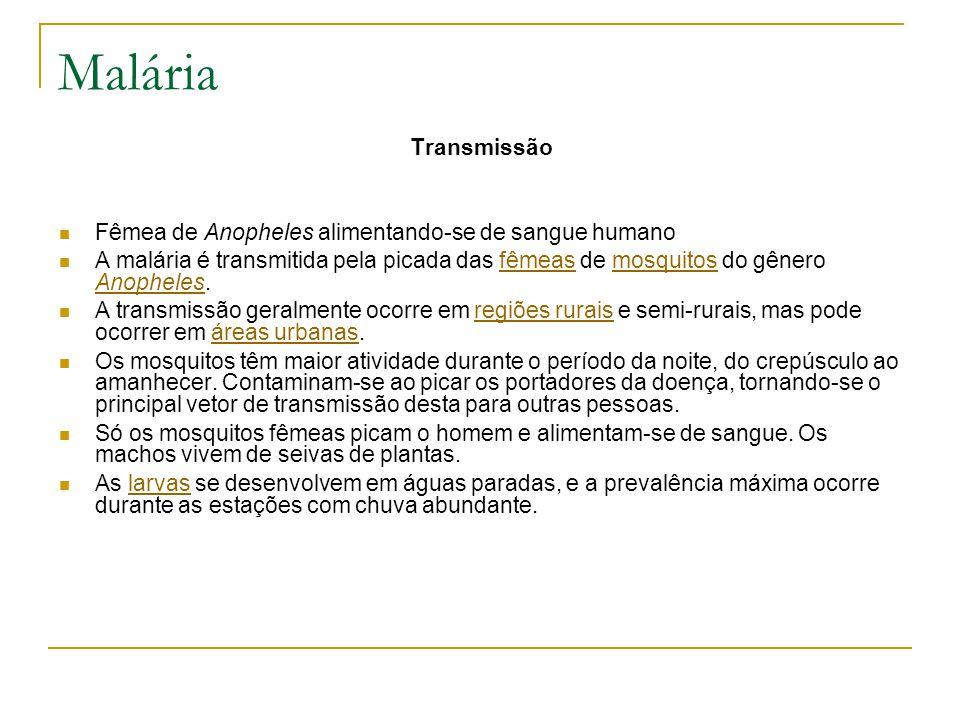Malária Transmissão Fêmea de Anopheles alimentando-se de sangue humano A malária é transmitida pela picada das fêmeas de mosquitos do gênero Anopheles