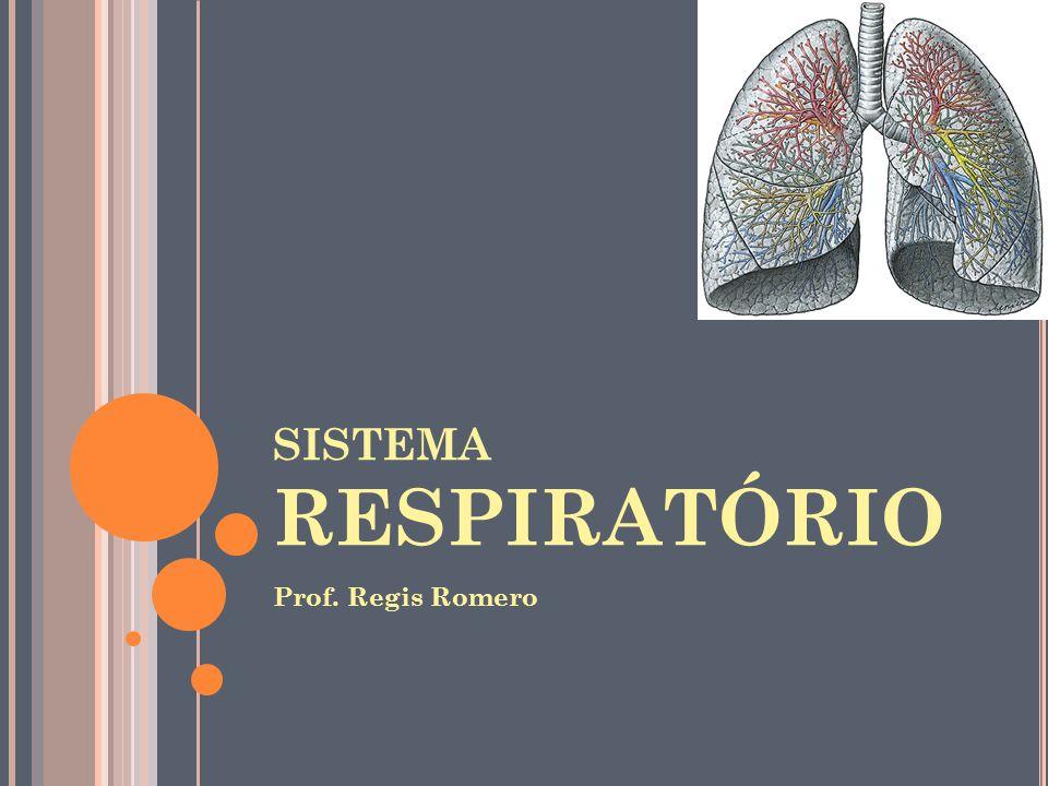 SISTEMA RESPIRATÓRIO Prof. Regis Romero