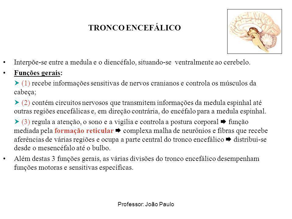 Professor: João Paulo TRONCO ENCEFÁLICO Interpõe-se entre a medula e o diencéfalo, situando-se ventralmente ao cerebelo. Funções gerais: (1) recebe in