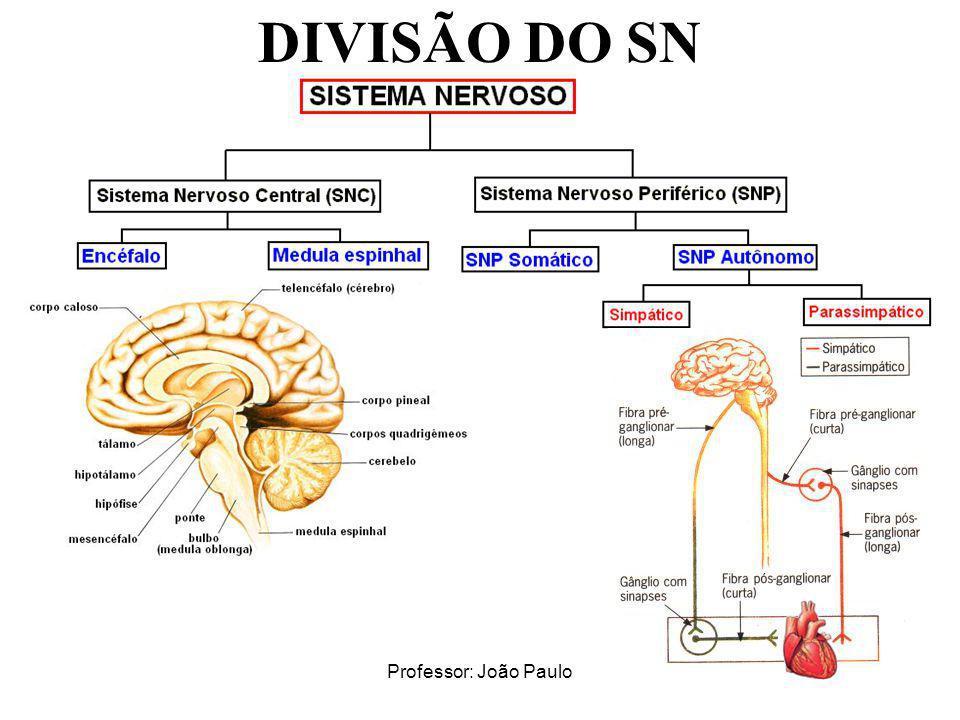 Professor: João Paulo DIVISÃO DO SN