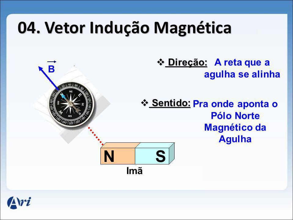 04. Vetor Indução Magnética NS B Direção: Direção: A reta que a agulha se alinha Sentido: Sentido: Pra onde aponta o Pólo Norte Magnético da Agulha Im