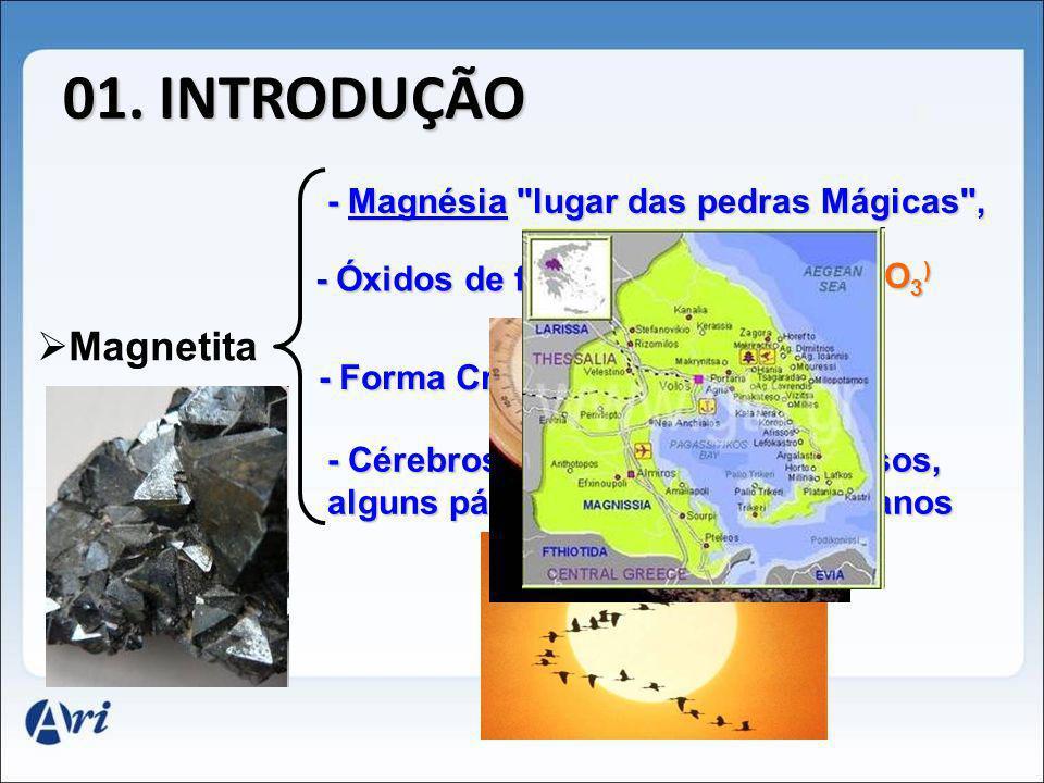 01. INTRODUÇÃO Magnetita - Óxidos de ferro II e III Fe 3 O 4 (FeO e Fe 2 O 3 ) - Magnésia