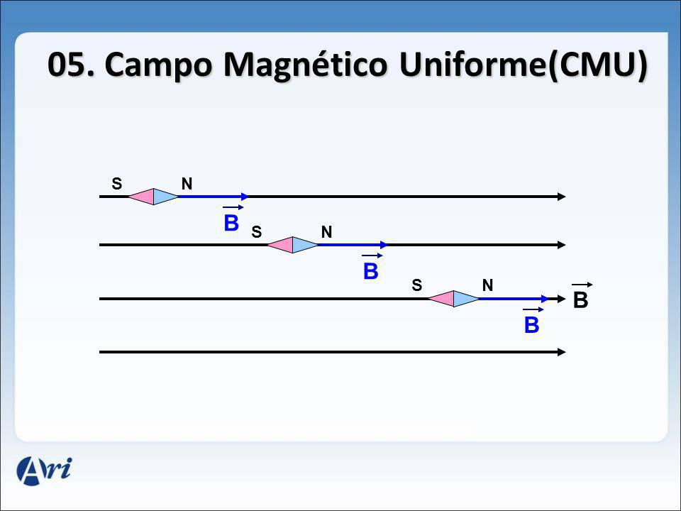 05. Campo Magnético Uniforme(CMU) B NS B B NS B NS