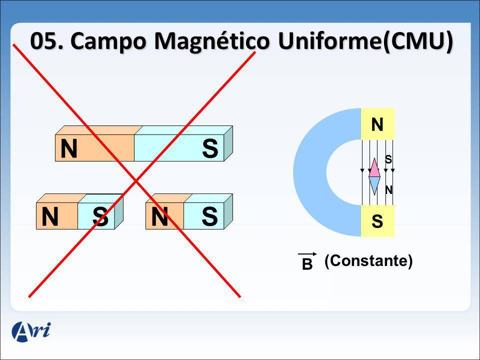 S N N S NS N S SNS B (Constante)