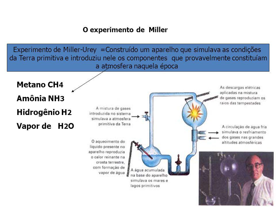 Metano CH4 Amônia NH3 Nesse momento teriam surgido os primeiros seres vivos