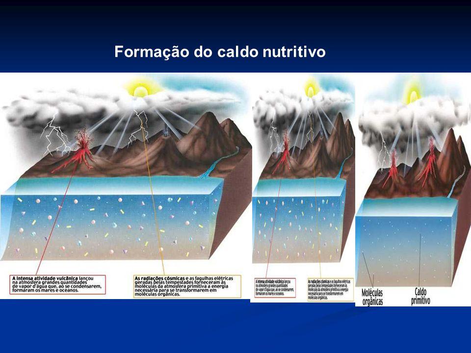 Esquema da Hipótese de Oparin e Haldane coacervatos Primeiras células procarióticas Atmosfera primitiva Mares primitivos