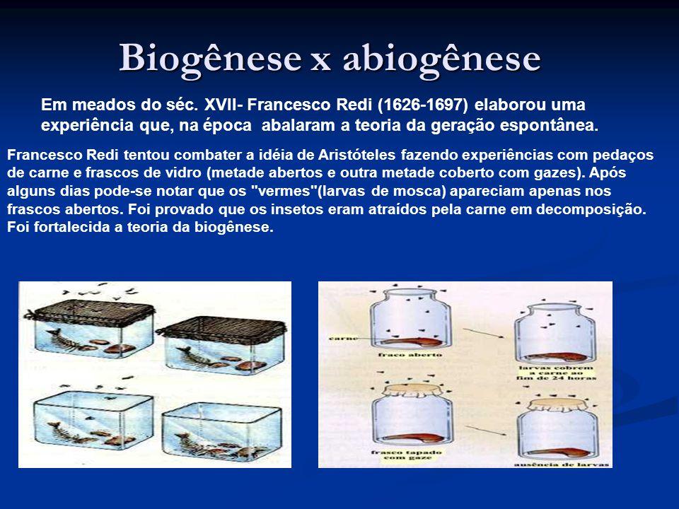 Teoria da abiogênese x Teoria da biogênese Aristóteles (384 a322 a.