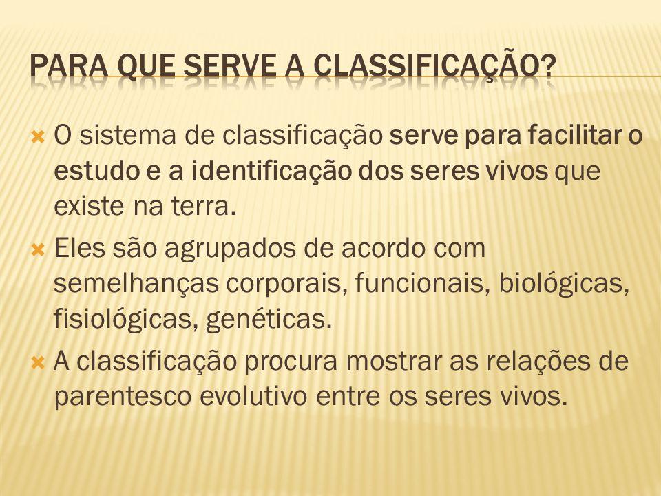 É a seção da biologia que cuida da classificação dos seres vivos.