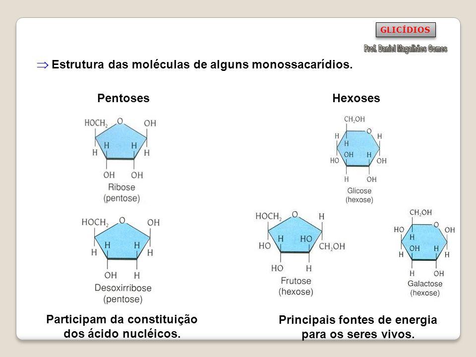 Pentoses Hexoses Participam da constituição dos ácido nucléicos. Principais fontes de energia para os seres vivos. Estrutura das moléculas de alguns m