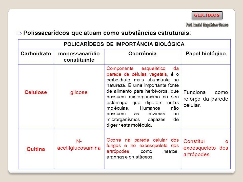 Polissacarídeos que atuam como substâncias estruturais: POLICARÍDEOS DE IMPORTÂNCIA BIOLÓGICA Carboidratomonossacarídio constituinte OcorrênciaPapel b