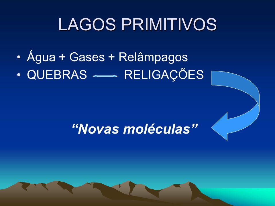 LAGOS PRIMITIVOS Água + Gases + Relâmpagos QUEBRAS RELIGAÇÕES Novas moléculas