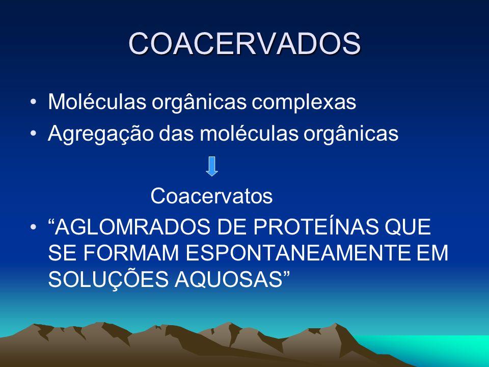 COACERVADOS Moléculas orgânicas complexas Agregação das moléculas orgânicas Coacervatos AGLOMRADOS DE PROTEÍNAS QUE SE FORMAM ESPONTANEAMENTE EM SOLUÇÕES AQUOSAS