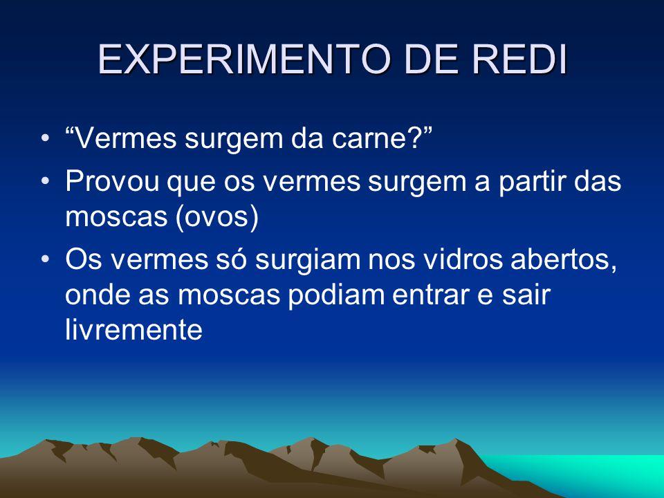 EXPERIMENTO DE REDI Vermes surgem da carne.