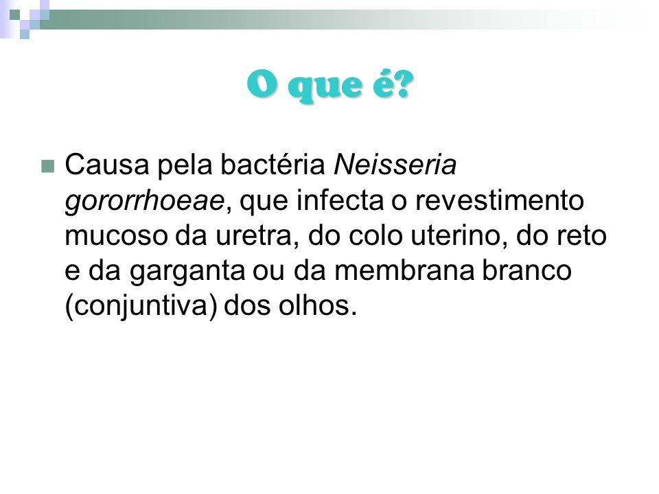 O que é? Causa pela bactéria Neisseria gororrhoeae, que infecta o revestimento mucoso da uretra, do colo uterino, do reto e da garganta ou da membrana