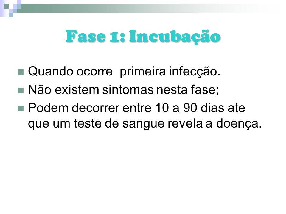 Fase 1: Incubação Quando ocorre primeira infecção. Não existem sintomas nesta fase; Podem decorrer entre 10 a 90 dias ate que um teste de sangue revel