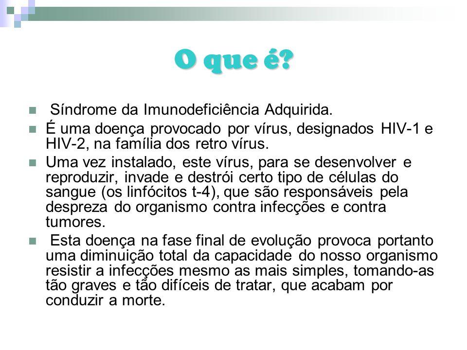 O que é? Síndrome da Imunodeficiência Adquirida. É uma doença provocado por vírus, designados HIV-1 e HIV-2, na família dos retro vírus. Uma vez insta