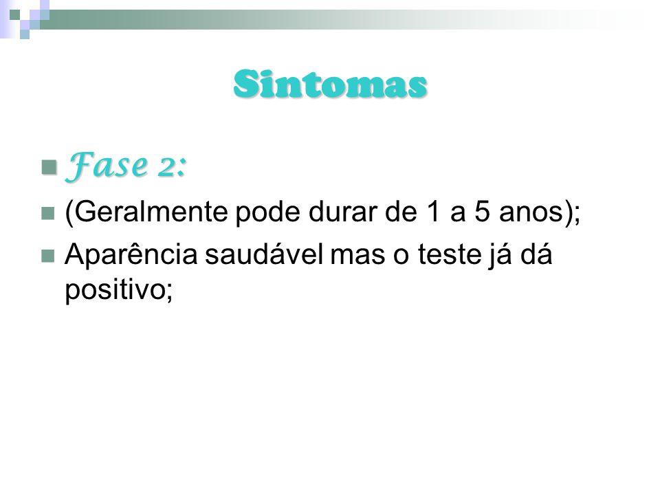 Sintomas Fase 2: Fase 2: (Geralmente pode durar de 1 a 5 anos); Aparência saudável mas o teste já dá positivo;