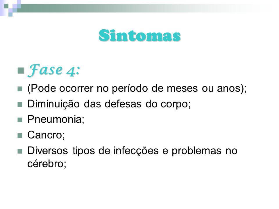Sintomas Fase 4: Fase 4: (Pode ocorrer no período de meses ou anos); Diminuição das defesas do corpo; Pneumonia; Cancro; Diversos tipos de infecções e
