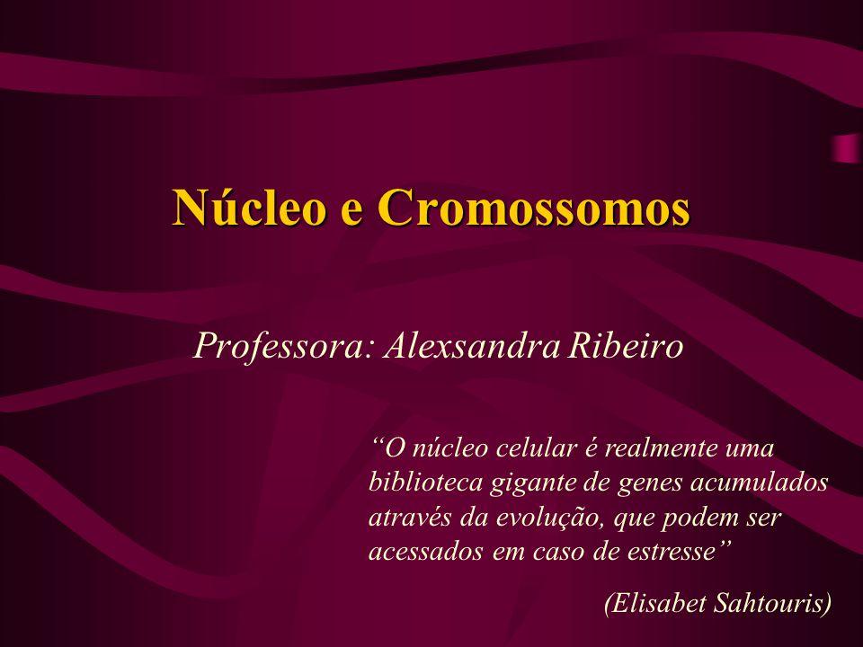Núcleo e Cromossomos Professora: Alexsandra Ribeiro O núcleo celular é realmente uma biblioteca gigante de genes acumulados através da evolução, que p