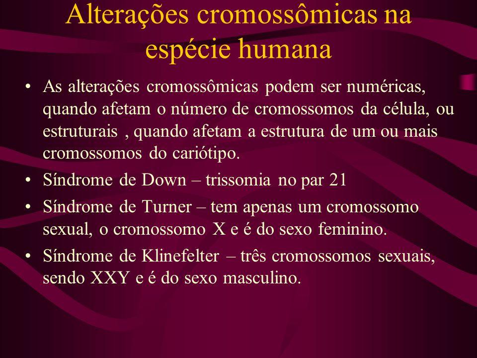 Alterações cromossômicas na espécie humana As alterações cromossômicas podem ser numéricas, quando afetam o número de cromossomos da célula, ou estrut