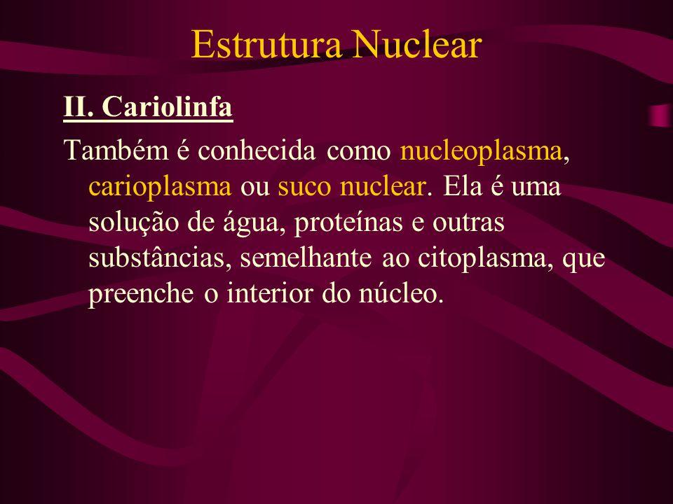 Estrutura Nuclear II. Cariolinfa Também é conhecida como nucleoplasma, carioplasma ou suco nuclear. Ela é uma solução de água, proteínas e outras subs