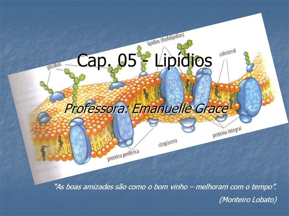 Cap. 05 - Lipídios Professora: Emanuelle Grace As boas amizades são como o bom vinho – melhoram com o tempo. (Monteiro Lobato)