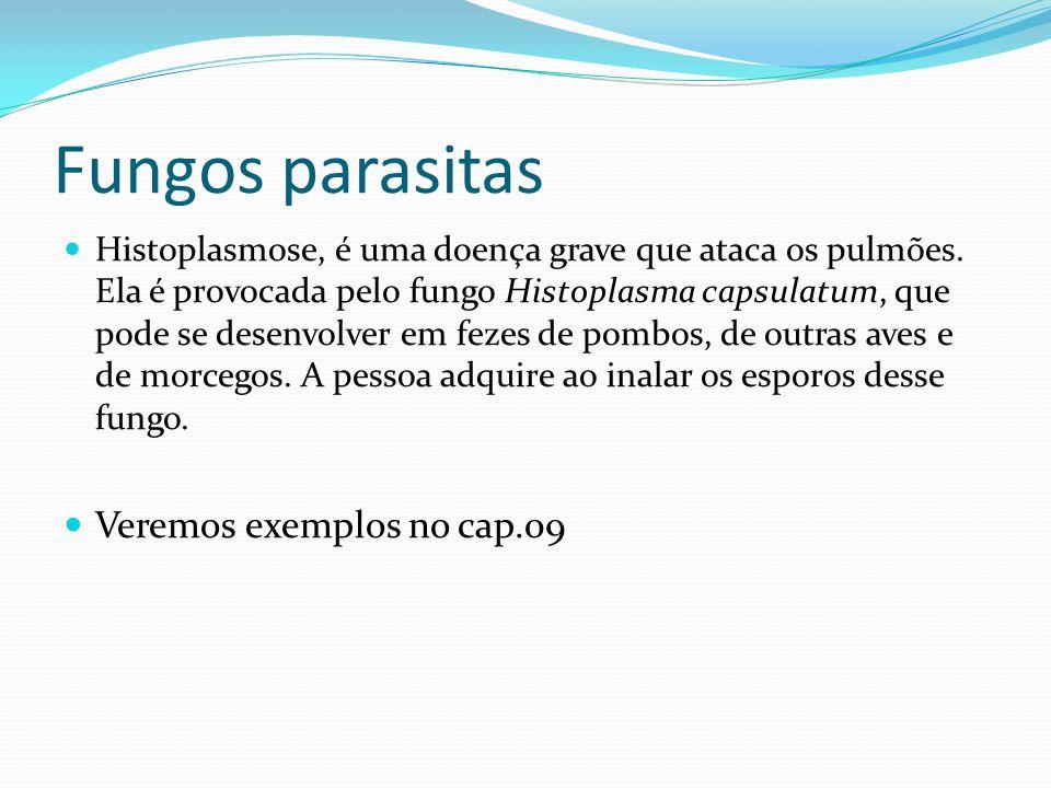 Fungos parasitas Histoplasmose, é uma doença grave que ataca os pulmões. Ela é provocada pelo fungo Histoplasma capsulatum, que pode se desenvolver em