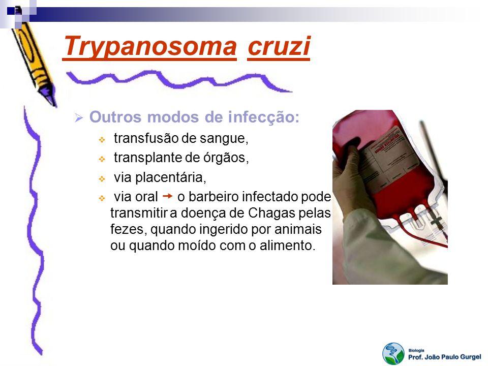 Trypanosoma cruzi Outros modos de infecção: transfusão de sangue, transplante de órgãos, via placentária, via oral o barbeiro infectado pode transmiti