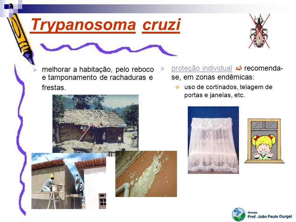Trypanosoma cruzi melhorar a habitação, pelo reboco e tamponamento de rachaduras e frestas. proteção individual recomenda- se, em zonas endêmicas: uso