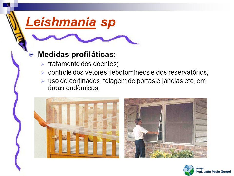 Leishmania sp Medidas profiláticas: tratamento dos doentes; controle dos vetores flebotomíneos e dos reservatórios; uso de cortinados, telagem de port