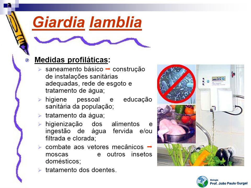 Giardia lamblia Medidas profiláticas: saneamento básico construção de instalações sanitárias adequadas, rede de esgoto e tratamento de água; higiene p