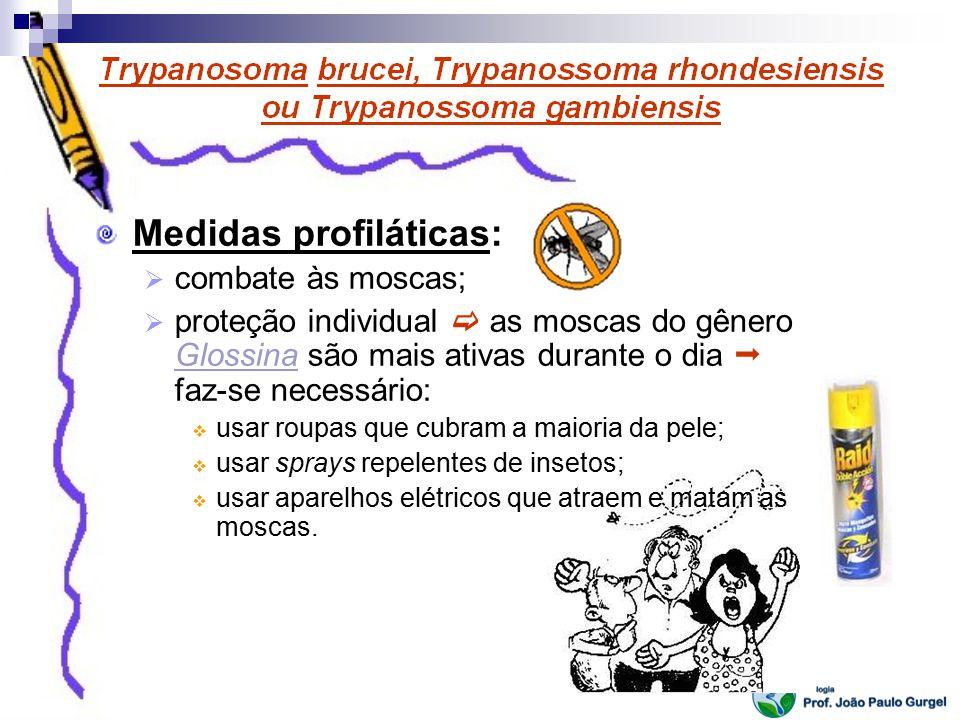 Medidas profiláticas: combate às moscas; proteção individual as moscas do gênero Glossina são mais ativas durante o dia faz-se necessário: usar roupas