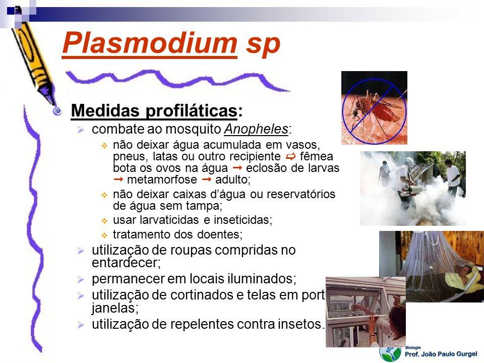 Plasmodium sp Medidas profiláticas: combate ao mosquito Anopheles: não deixar água acumulada em vasos, pneus, latas ou outro recipiente fêmea bota os