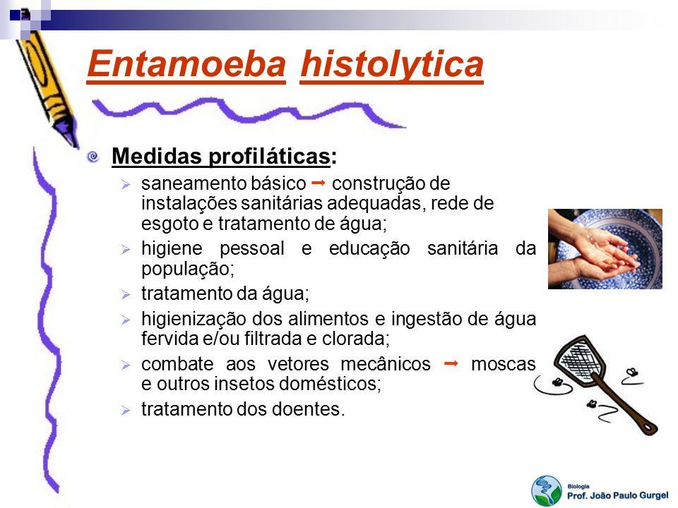 Entamoeba histolytica Medidas profiláticas: saneamento básico construção de instalações sanitárias adequadas, rede de esgoto e tratamento de água; hig