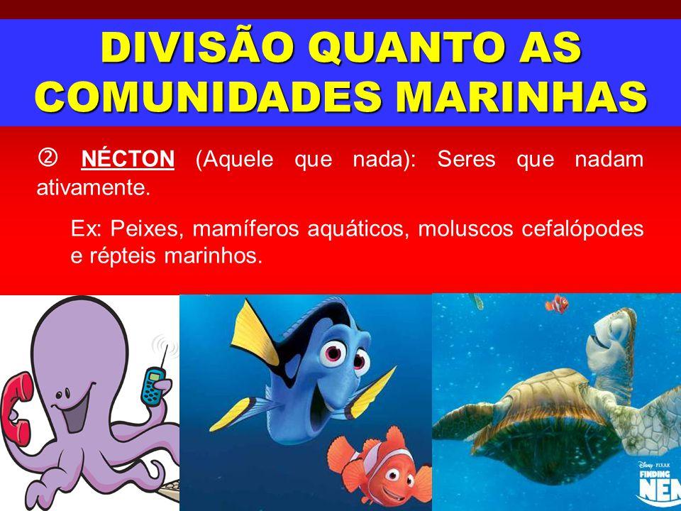 DIVISÃO QUANTO AS COMUNIDADES MARINHAS NÉCTON (Aquele que nada): Seres que nadam ativamente. Ex: Peixes, mamíferos aquáticos, moluscos cefalópodes e r