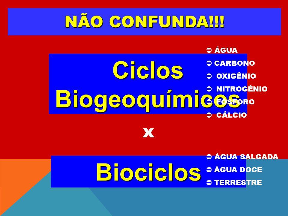 NÃO CONFUNDA!!! Biociclos Ciclos Biogeoquímicos x ÁGUA CARBONO OXIGÊNIO NITROGÊNIO FÓSFORO CÁLCIO ÁGUA SALGADA ÁGUA DOCE TERRESTRE